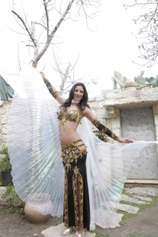 Iridescent organza isis wings for belly dance