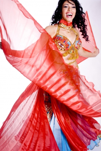 Soft organza isis wings for belly dance