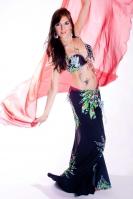 Belly dance cabaret costume - True Elegance