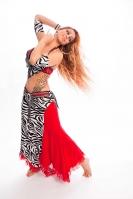 Belly dance cabaret costume - Scarlet Zebra