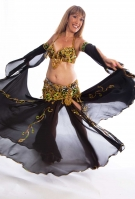 Belly dance cabaret costume - Dangerous Dancer
