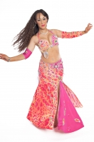 Belly dance cabaret costume - Arabian Princess 2