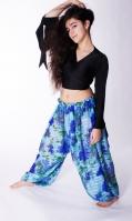 Deep blue and sky blue floral printed harem gypsy pants