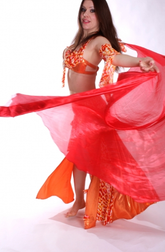 Belly dance iridescent organza veil - in various colours
