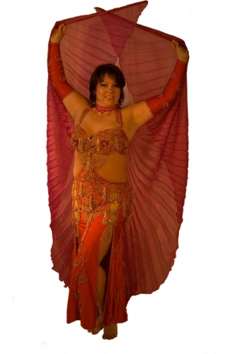 Belly dance costume - Red and Gold