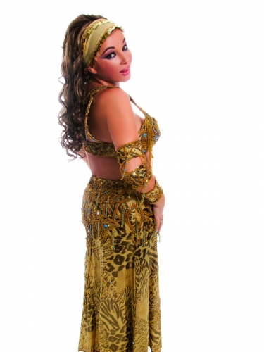 Belly dance costume - Leopard and Tiger print