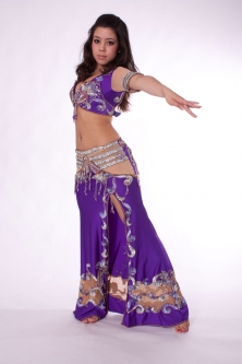 Belly dance costume Royal Purple/Silver and Pink