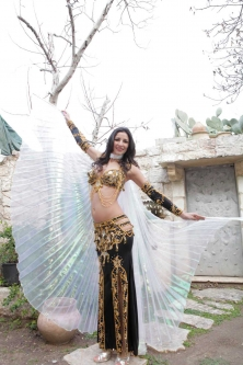 Belly dance iridescent organza wings - in various colours