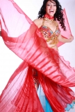Belly dance organza isis wings - in various colours