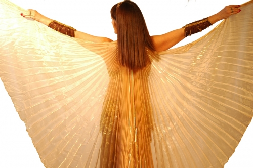 Belly dance soft organza isis wings - in various colours