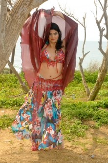 Hallah for Brighton Orient Belly dance couture costume - Freedom