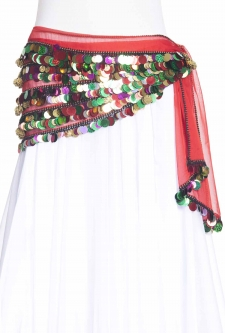 Unique mesh belly dance belt