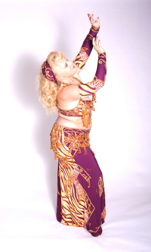 WOW! Belly dance cabaret costume - Tiger Nights